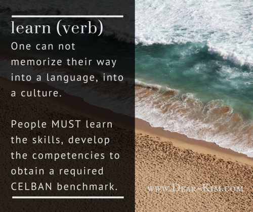 One can not memorize their way into a language, into a culture.People MUST learn the skills, develop the competencies to obtain a required benchmark.